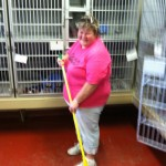 Picure of a woman sweeping