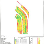 Picture of Yield Map Field 1 Corn - 2004