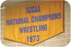 Picture of the National Champion Wrestling Banner