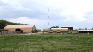 Photo of Agriculture buildings on the NIACC campus